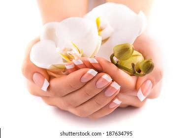 beautiful french manicure  on white