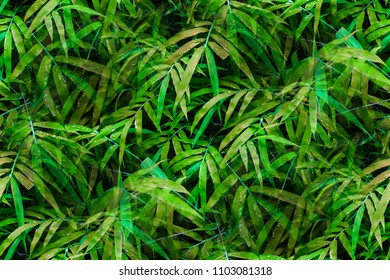 Beautiful fresh bamboo leaves pattern with water drops in natural bamboo forest for wallpaper and background