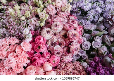 Beautiful fresh blossoming flower bed of pink Cappuccino Ranunculus, purple roses and Mattiolas, pink carnations and Eustoma Lisianthus, top view, flat lay