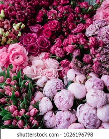 Beautiful fresh blossoming flowers texture at the florist shop in ombre color from magenta pink to pastel pink: ranunculus, peonies, roses, tulips, carnations, top view, flat lay