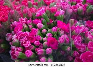 Beautiful fresh carnations flower and texture in pink colors, top view, flat lay