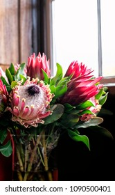 Beautiful fresh flower arrangement of King Protea flowers in a vase next to a window with natural light and copy space