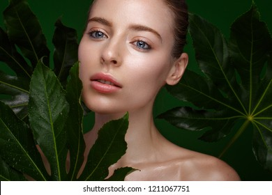 Beautiful fresh girl with perfect skin, natural make-up and green leaves. Beauty face. Photo taken in the studio.