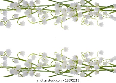 beautiful, fresh lilies of the valley isolated on white