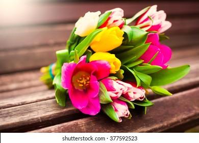 Beautiful Fresh Spring Flowers Multicolored Tulips Stock Photo Edit