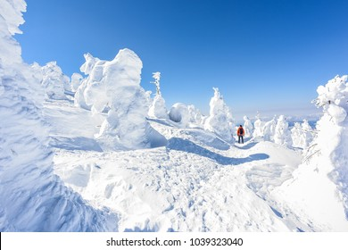 Beautiful Frozen Forest Covered With Powder Snow as Snow Monsters at Mount Zao Range, Zao Juhyo Festival, Yamagata , Japan