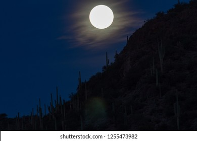 The beautiful full moon preparing to set in the Sonoran Desert night sky at Saguaro National Park in Pima County, Tucson, Arizona. Tall cactus silhouettes, black and blue colors.
