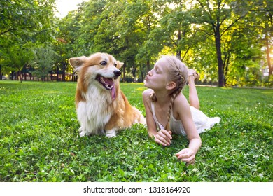beautiful fun blond girl and corgi fluffy on the lawn on a sunny summer day