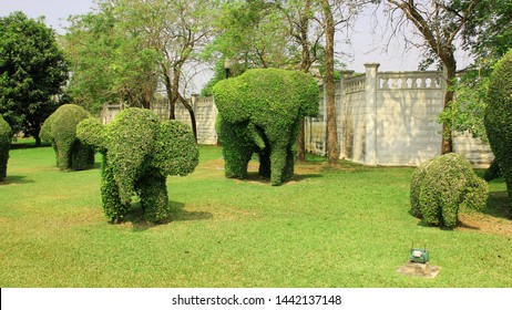 Beautiful garden art decoration made as trimmed elephants bushes  in the park.Shaped bush elephants. Topiary elephant group.2013 Bangkok,Thailand