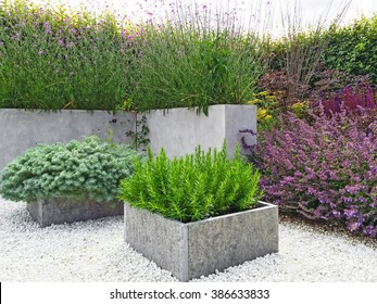 Beautiful garden with blooming plants, concrete and stone details. Contemporary design.