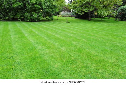 Beautiful Garden with a Fresh Mown Lawn