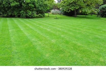Beautiful Garden with a Fresh Mown Lawn