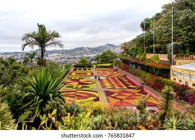 Beautiful Garden in Funchal, Madeira