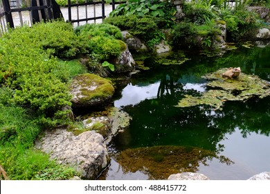 beautiful garden in Japanese style