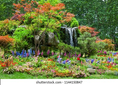 Beautiful Garden, Landscape with Flowers
