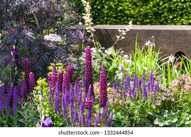Beautiful garden landscape with white, blue and purple flowers