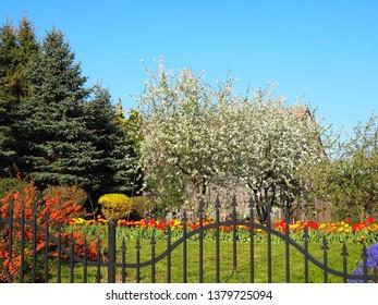 Beautiful garden, many natural colors