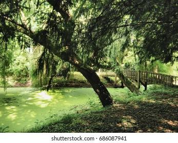 """Beautiful garden at """"Mayenne"""" in France"""