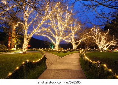 Beautiful garden night scene in Christmas in butchart gardens, victoria, british columbia, canada