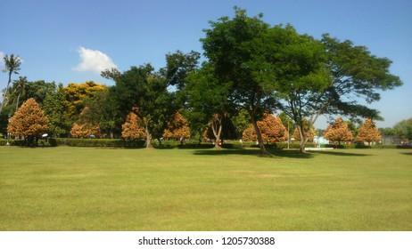Beautiful Garden Park
