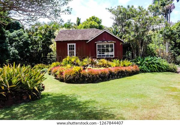 Beautiful Garden Photos Stock Photo Edit Now 1267844407