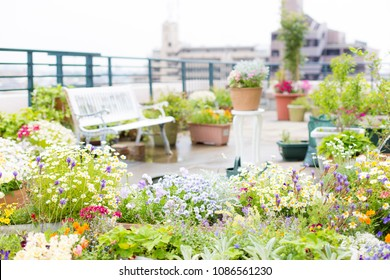 Beautiful garden of roof balcony