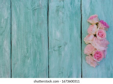 beautiful garden roses on turquoise wooden surface