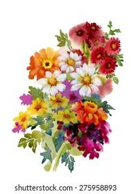 Beautiful garden summer flowers, watercolor illustration