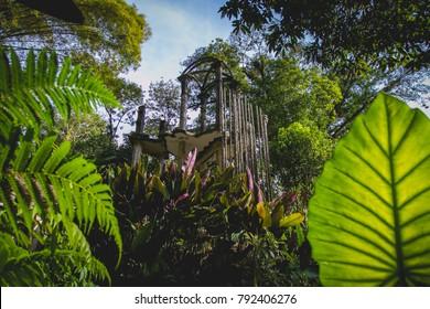 Beautiful gardens at the Edward James Castle (Castillo de Edward James) at Xilitla, San Luis Potosí, México. 01-01-2018