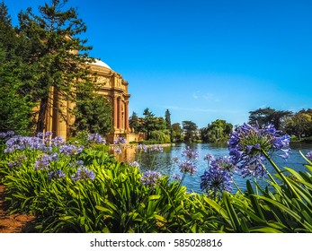 Beautiful Gardens of Palace of Fine Arts in San Francisco