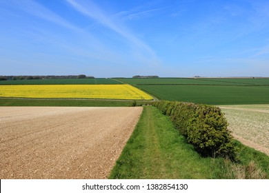 Beautiful geometric landscape of arable fields and hedgerows in springtime