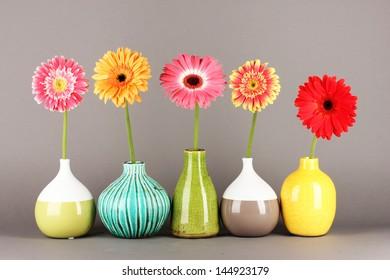 Beautiful Gerber flowers on grey background