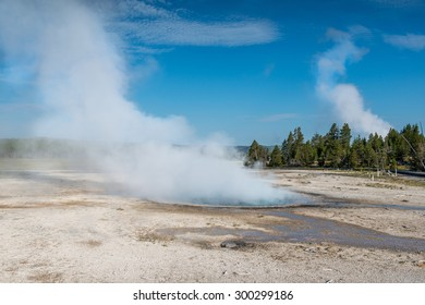 beautiful geyser in yellowstone national park ,Wyoming,usa.