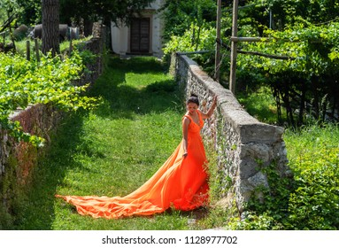 Beautiful girl in amazing fluttering orange dress standing on the alley in front of the house with vineyard.
