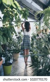 A beautiful girl among green plants