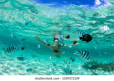 Beautiful girl with black hair has been snorkeling on the island of Mauritius in the Indian Ocean. She feeds the fish under water in clear turquoise water