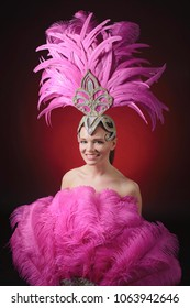 Beautiful girl in carnival costume with rhinestones and pink feathers. Beautiful professional make-up, perfect headdress.