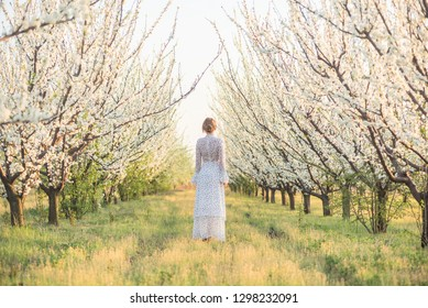 beautiful girl in a dress in the flowered garden, women's back, spring time