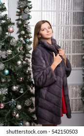 Beautiful girl dressed in a grey mink coat around the Christmas tree