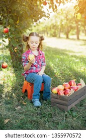Beautiful Girl Eating Organic Apple in the Orchard. Harvest Concept. Garden, Toddler eating fruits at fall harvest.