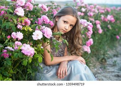 Beautiful girl  in grey dress collect roses in Bulgaria in sunrise.