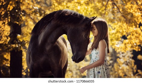 Beautiful girl with her andalusian horse and beautiful warm sunset in the autumn forest