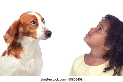 Beautiful girl and her dog looking up isolated on white background