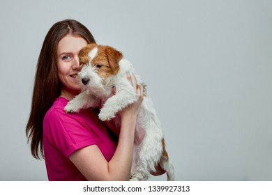 Beautiful girl with a jack russell terrier on her hands on a gray background, copy space
