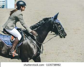 Beautiful girl on black horse in jumping show, equestrian sports. Horsewoman in uniform  patting the horse in gratitude. Hot, shiny day.