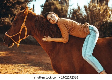 A beautiful girl on a brown horse outside at sunset