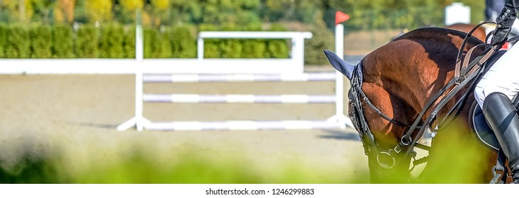 Beautiful girl on sorrel horse in jumping show, equestrian sports. Light-brown horse and girl in uniform going to jump. Horizontal web header or banner design.