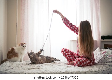 beautiful girl in pajamas with long hair plays with two cats on the bed with a rope, against the window of a small bright real room