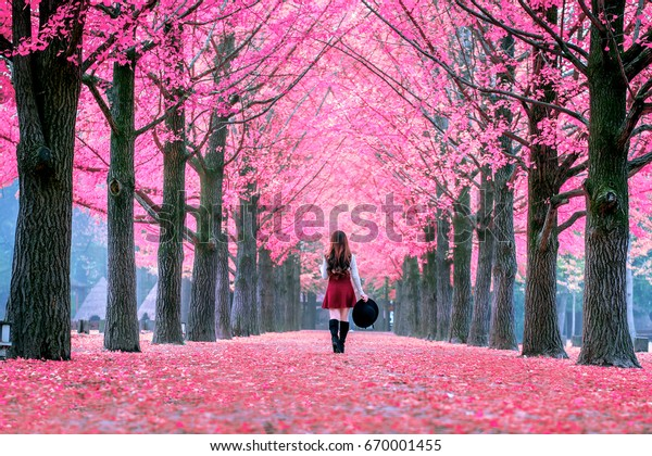 Beautiful Girl with Pink Leaves in Nami Island, South Korea. Autumn in korea.