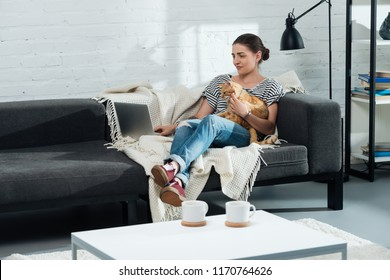 beautiful girl sitting on sofa with ginger cat and laptop in living room